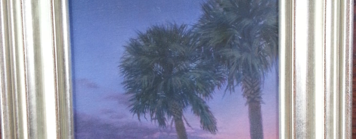 Framed Art of the Day – Michael Story – Palmetto Evening Canvas