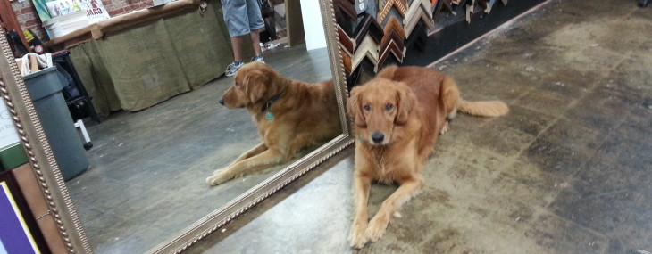 Big Framed Mirror with Moon Dog Model