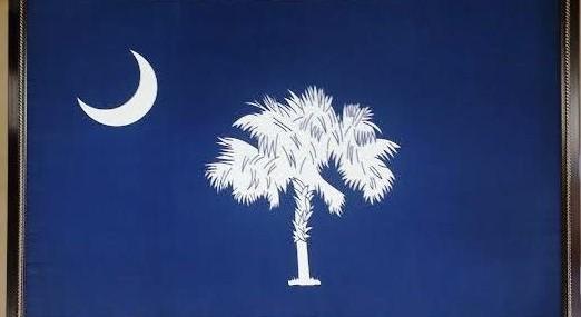 Framed South Carolina Flag!