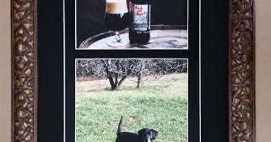 Framed Photos of Favorite Dog and Namesake Beer!